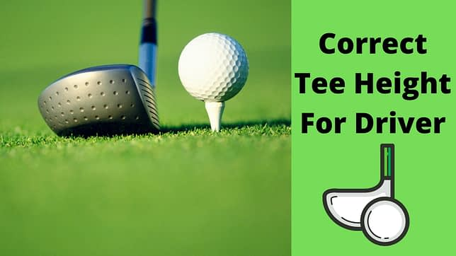 Correct Tee Height For Driver
